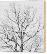 Double Exposure 1 Wood Print