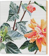 Double Orange Hibiscus With Buds Wood Print