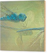 Dragons Fly Wood Print