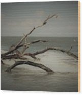 Drifting Along With The Tide Wood Print