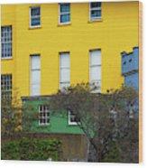 Dublin Castle Colors Two Wood Print