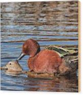 Ducky Delight Wood Print