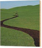 Dunnigan Hills 1 Wood Print