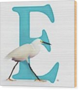 E Is For Egret Wood Print