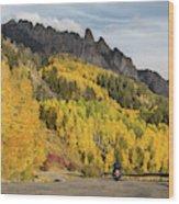 Easy Autumn Rider Wood Print