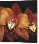 Orange Cimbidium Orchid Wood Print