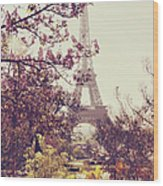 Eiffel Tower, Paris Wood Print