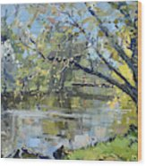 Ellicott Creek Park Wood Print