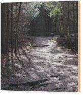 Elora 3 Wood Print