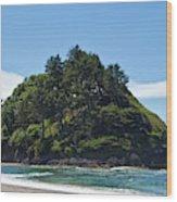 Emerald Isle Wood Print