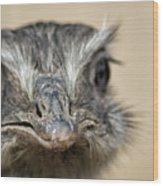 Emu Print 9052 Wood Print