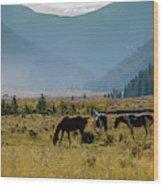 Equine Valley Wood Print