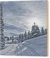 Escape From Beaver Creek Wood Print