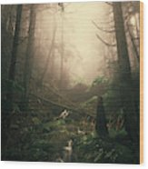 Escaping Chaos Wood Print