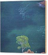 Esterel Mountains Wood Print
