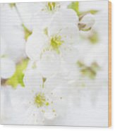 Ethereal Blossoms Wood Print