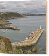 Evening Over Mevagissey Harbour  Wood Print