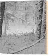 Evening Snow Wood Print