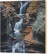 Every Teardrop Is A Waterfall Wood Print