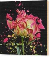 Exploding Rose Wood Print