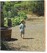 Explore, Edgefield Garden Wood Print