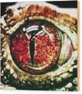 Eye See You Wood Print