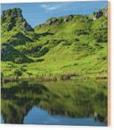 Fairy Glen, Isle Of Skye Wood Print