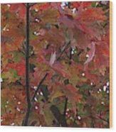 Fall Collage Wood Print