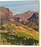Fall Colors On The North Face Of Pikes Peak Wood Print