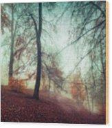 Fall Feeling Wood Print