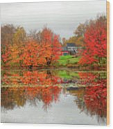 Fall Foliage In Rural New Hampshire Wood Print