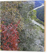 Fall Meets Winter Wood Print