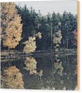 Fall Mirrors 2 Wood Print