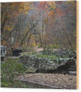 Fall On The Kings River Wood Print