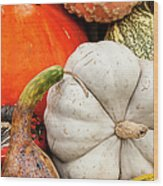 Fall Season Squash And Pumpkins Wood Print