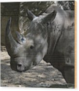 Fantastic Profile Of A Rhino With A Long Horn Wood Print