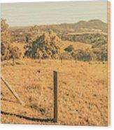 Farm Fields Of Eumundi, Sunshine Coast Wood Print