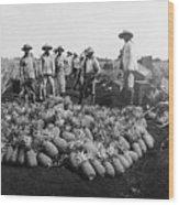 Farm Workers Beside Pineapple Stack Wood Print