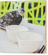 Fast Food Asian Pigeon Wood Print