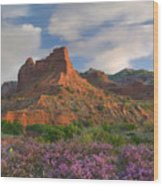 Feather Dalea, Caprock Canyons State Wood Print