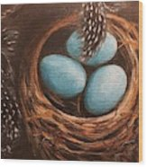 Feathers And Eggs Wood Print
