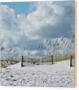 Fences In The Sand Wood Print