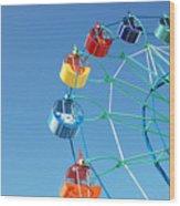Ferris In Spring Park Wood Print