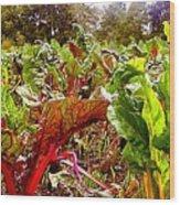 Field Of Chard Wood Print