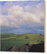 Fields Around Dunamace, Co Laois Wood Print