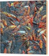 Fish Fight Wood Print