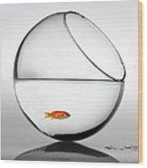 Fish In Fish Bowl Stressed In Danger Wood Print