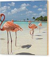 Flamingos On The Beach Wood Print