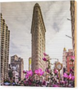 Flatiron And Flowers Wood Print