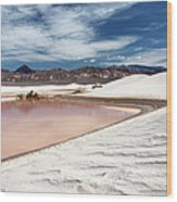 Flooded Dunes At Death Valley National Wood Print